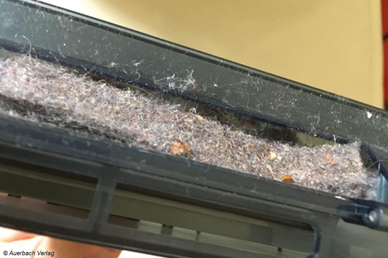 Der Staubbehälter mit Filter ist schnell zu entleeren