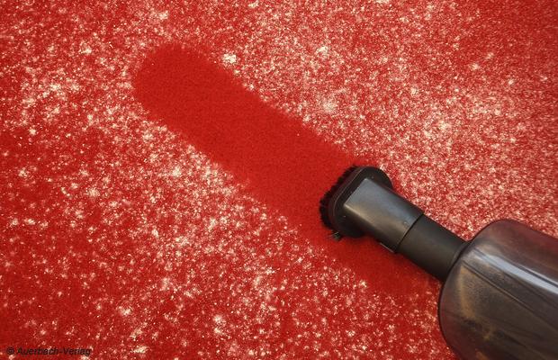 Bei feinem Staub auf dem Teppich kommt jeder Staubsauger an seine Grenzen, für den Fall der Fälle ist die kleine Pinsel-Düse die beste Wahl