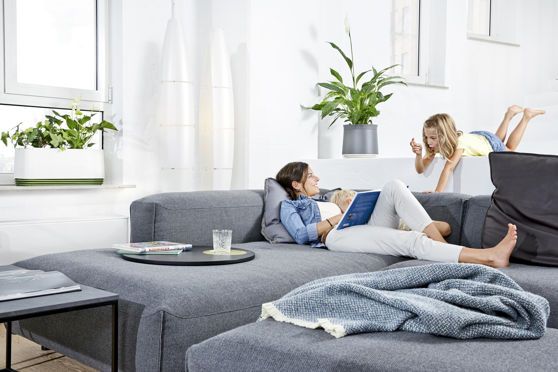 mit airy gegen luftverschmutzung zuhause haus garten test. Black Bedroom Furniture Sets. Home Design Ideas