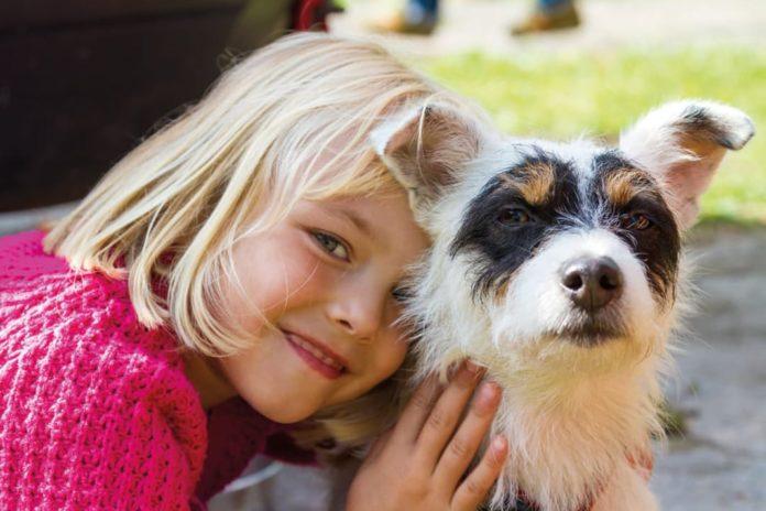 Auf ein Haustier als neues Familienmitglied hießt es sich gründlich vorzubereiten