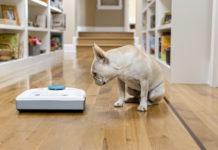Der Neato Roboter-Staubsauger hilft beim Kampf gegen Tierhaare und lästige Allergien