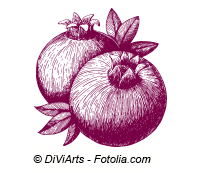 © DiViArts - Fotolia.com