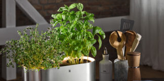 Im Kräutergarten WMF Ambient @home Küchenkräuter können auch andere Gemüse- und Obstpflanzen oder Zimmerblumen angepflanzt werden