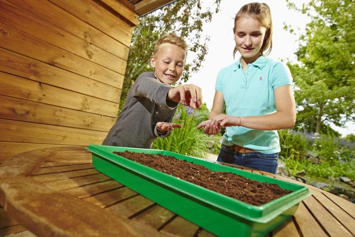 Für gutes Gelingen bei der Anzucht von Kräutern und Jungpflanzen sorgt Bio Kräuter- und Aussaaterde ohne Torf.