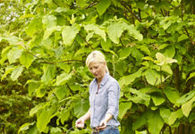 Mit der Vital Grün Rasenpflegeserie von Floragard haben Gartenbesitzer die idealen Produkte zum Aufpäppeln ihrer Rasenflächen im Frühjahr