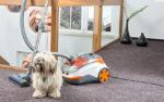 Mit dem Cycloon Hybrid Pet & Friends ist den Haaren unserer lieben tierischen Mitbewohner schnell zu Leibe gerückt
