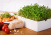 Mit Heimgart, dem kleinen Küchengarten, gibt es stets frisches Gemüse im Mini-Format