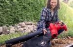 Mit einem Elektro-Laubsauger von Einhell sparen Hobbygärtner die schweißtreibende Arbeit mit einem Rechen