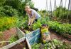 Gute Basis für ökologisches Gärtnern im Hochbeet: Floragard Bio Tomaten- und Gemüseerde ohne Torf