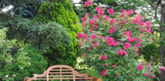 Pflegeboxen von PNZ für den Frühjahrsputz werden auch speziell für Gartenmöbel aus Echtholz angeboten.