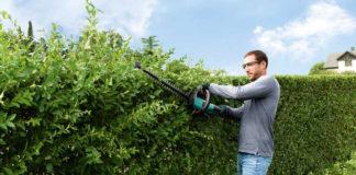Um die Gartenarbeit ohne Rückenschmerzen zu gestalten, müssen auch die Heckenscheren im Blick bleiben, die den Körper schnell in eine unnatürliche Position zwingen können