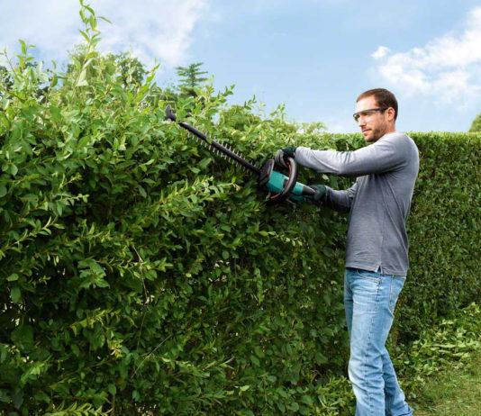Um die Gartenarbeit ohne Rückenschmerzen zu gestalten, müssen auch die Heckenscheren im Blick bleiben, die den Körper schnell in eine unnatürliche Position zwingen können.